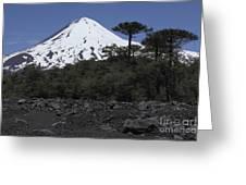 Llaima Volcano, Araucania Region, Chile Greeting Card