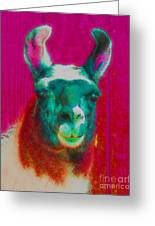 Llama Of A Different Color Greeting Card