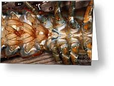 Lobster Female Sex Organs Greeting Card