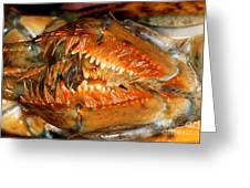 Lobster Mouth Greeting Card