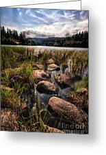 Loch Ard From The Reed Beds Greeting Card by John Farnan