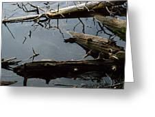 Log Jam Greeting Card