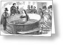 London: Talking Fish, 1859 Greeting Card