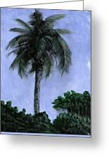 Lone Palm Greeting Card