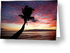 Lone Palm Greeting Card