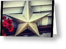 Lone Star Texas Greeting Card by Dana Coplin