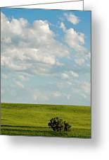 Lone Trees Greeting Card