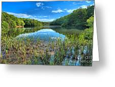 Long Branch Marsh Greeting Card by Adam Jewell
