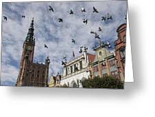 Long Market With Pigeons, Town Hall Greeting Card by Keenpress