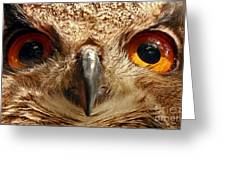 Look Into My Eyes Greeting Card