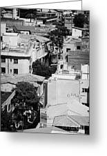 looking down over rooftops to ledra street crossing and  restricted area of the UN buffer zone  Greeting Card