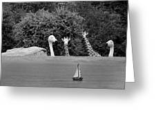 Lookouts Bw Greeting Card