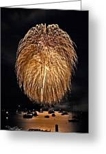 Lopez Island Fireworks 1 Greeting Card by David Salter