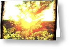 Los Alamos Sunset Greeting Card