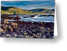 Lost Coast In Winter Greeting Card