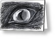 Lost In The Eye Of Your Past Greeting Card