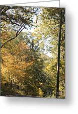 Lost In The Fall Greeting Card