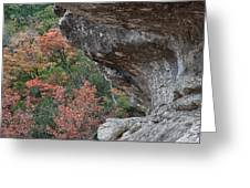 Lost Maples Fall Scene Greeting Card