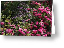 Lots Of Blooms Greeting Card