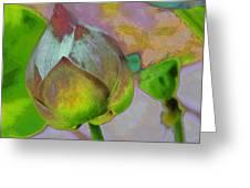 Lotus Dreaming 1 Greeting Card