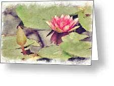 Lotus Flower12 Greeting Card