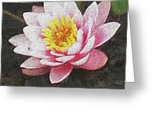 Lotus In The Rain 3 Greeting Card