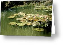 Lotus Pond 2 Greeting Card
