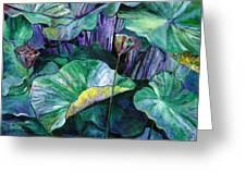 Lotus Pond Greeting Card by Carol Mangano