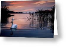 Lough Leane, Killarney National Park Greeting Card