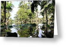 Louisiana Reflections Greeting Card