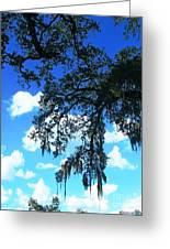 Louisiana Skyscape Greeting Card