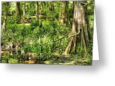 Louisiana Wetland Greeting Card