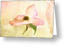 Love Letter Vi Greeting Card