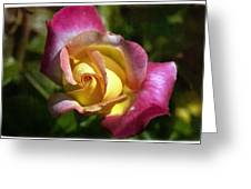 Love N Peace Greeting Card