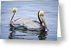 Lovebirds Greeting Card