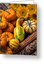 Lovely Autumn Greeting Card