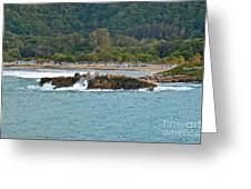 Lovely Labadee Greeting Card