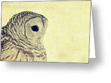 Lovely Lucy Barred Owl Greeting Card