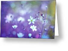 Lovestruck In Purple Greeting Card