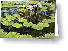 Loving Lilypads Greeting Card