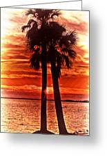 Loving Palms-the Journey Greeting Card