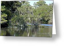 Lowcountry Landscape II Greeting Card