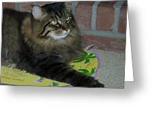Lucky The Cat Greeting Card