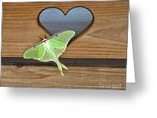Luna Moth In Love Greeting Card