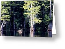 Lunker Lake Greeting Card