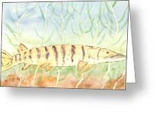 Lurking Tiger Greeting Card