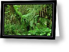 Lush Green Landscape Greeting Card
