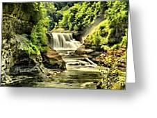 Lush Lower Falls Greeting Card