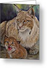 Lynx Mom And Baby Greeting Card