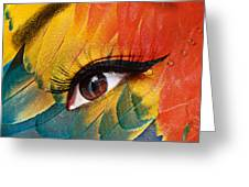 Macaw Greeting Card by Yosi Cupano